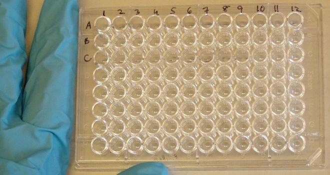 96-луночный микропланшет