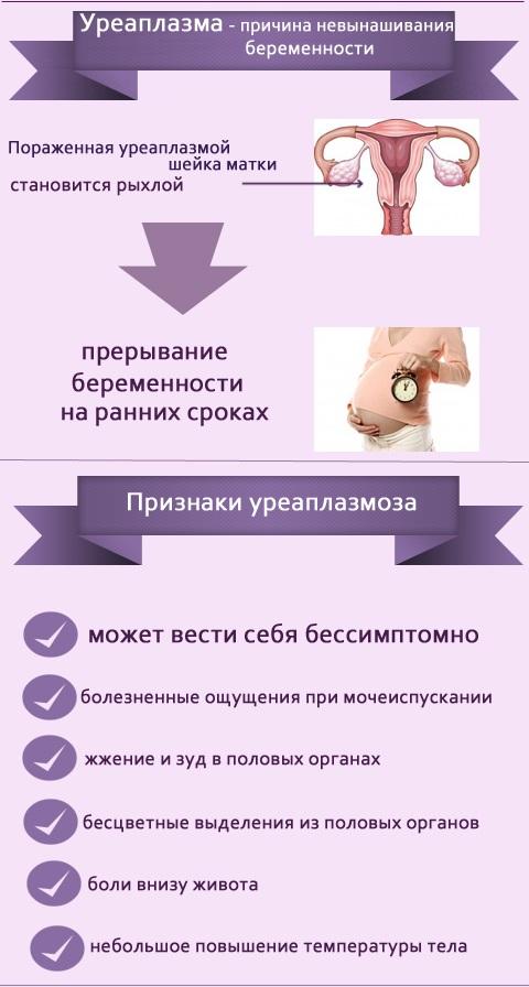 Уреаплазмоз инфографика