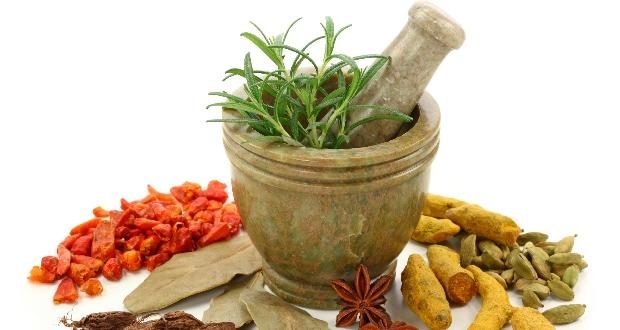 Роль трав в процессе лечения