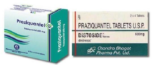 Чим лікувати опісторхоз: методи, схеми, препарати для дорослих » журнал здоров'я iHealth 2
