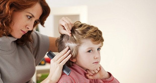 Вши у детей причины лечение