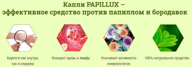papillux2