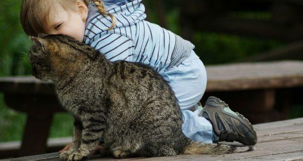 Лечение токсокароза у детей схема лечения