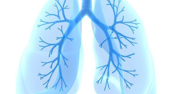 Глисты в легких у человека симптомы лечение