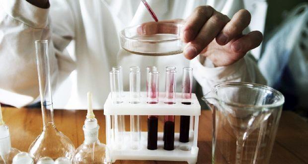 Какие анализы сдать на паразитов взрослому