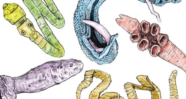 Какие симптомы при паразитах