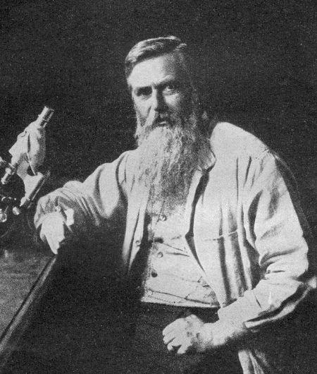 Otto Bütschli